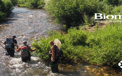 Biomark Applies Novel Methodology to Endangered Salmon Populations in the Pacific Northwest